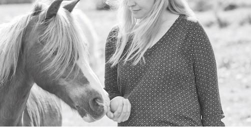 eventeffect häst